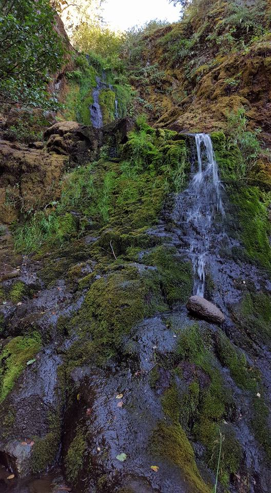 Waterfall views of Bybee Gultch & Lost Falls in Jackson County, Oregon